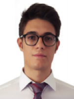 Mirko Nava